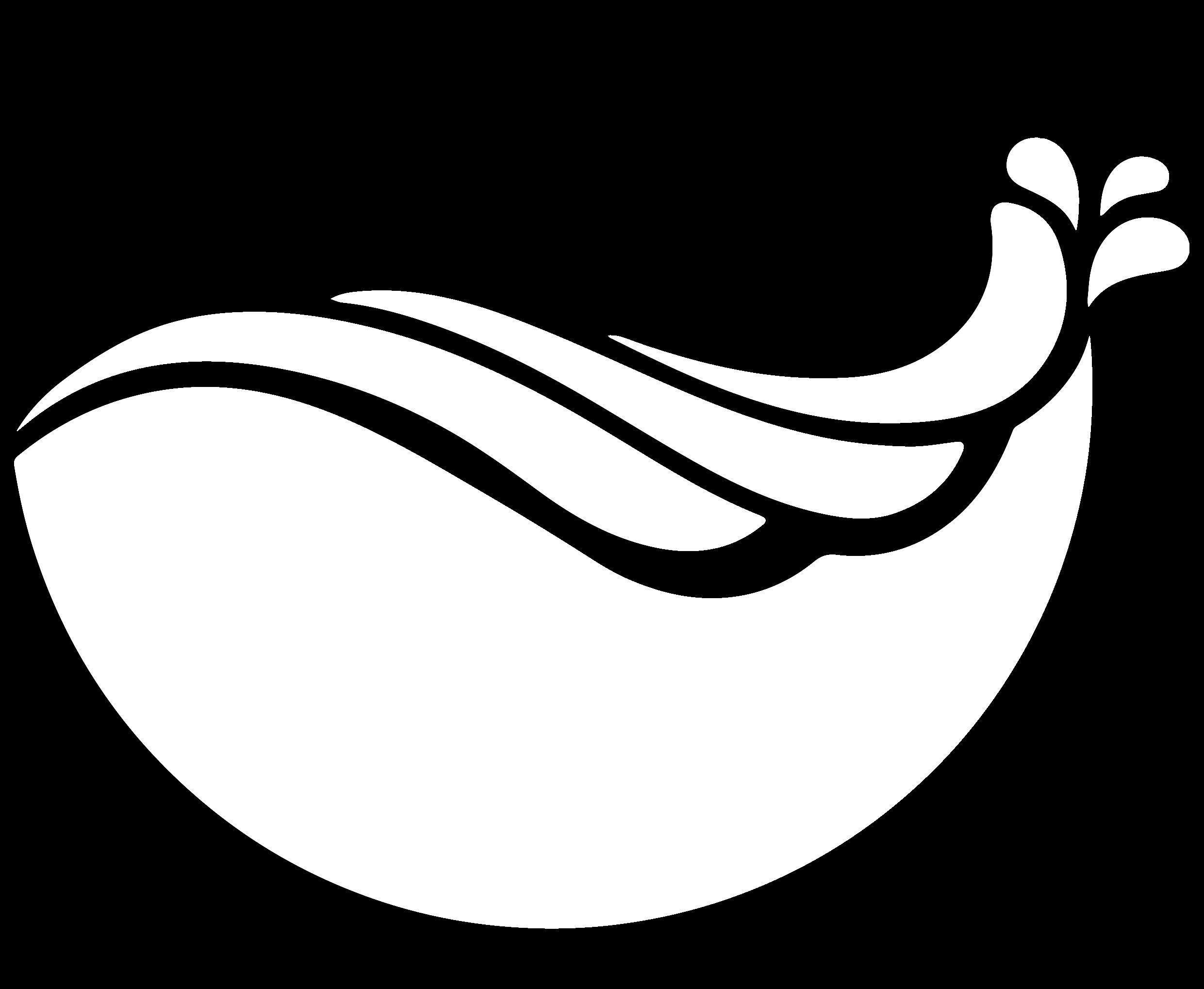 SurfClear Blog